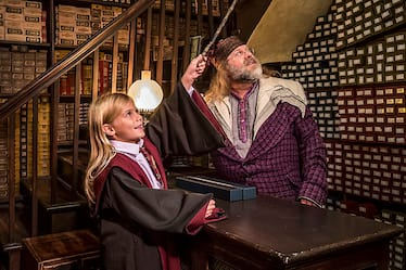 ollivanders-diagon-alley-shop-team-member-c-00
